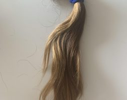 12 inch chestnut hair for Sale