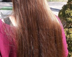 18″ Virgin Straight Fine Chestnut Hair
