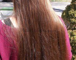 18″ Virgin Straight Fine Chestnut Hair