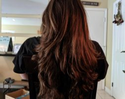 13 Inches of long brown virgin hair