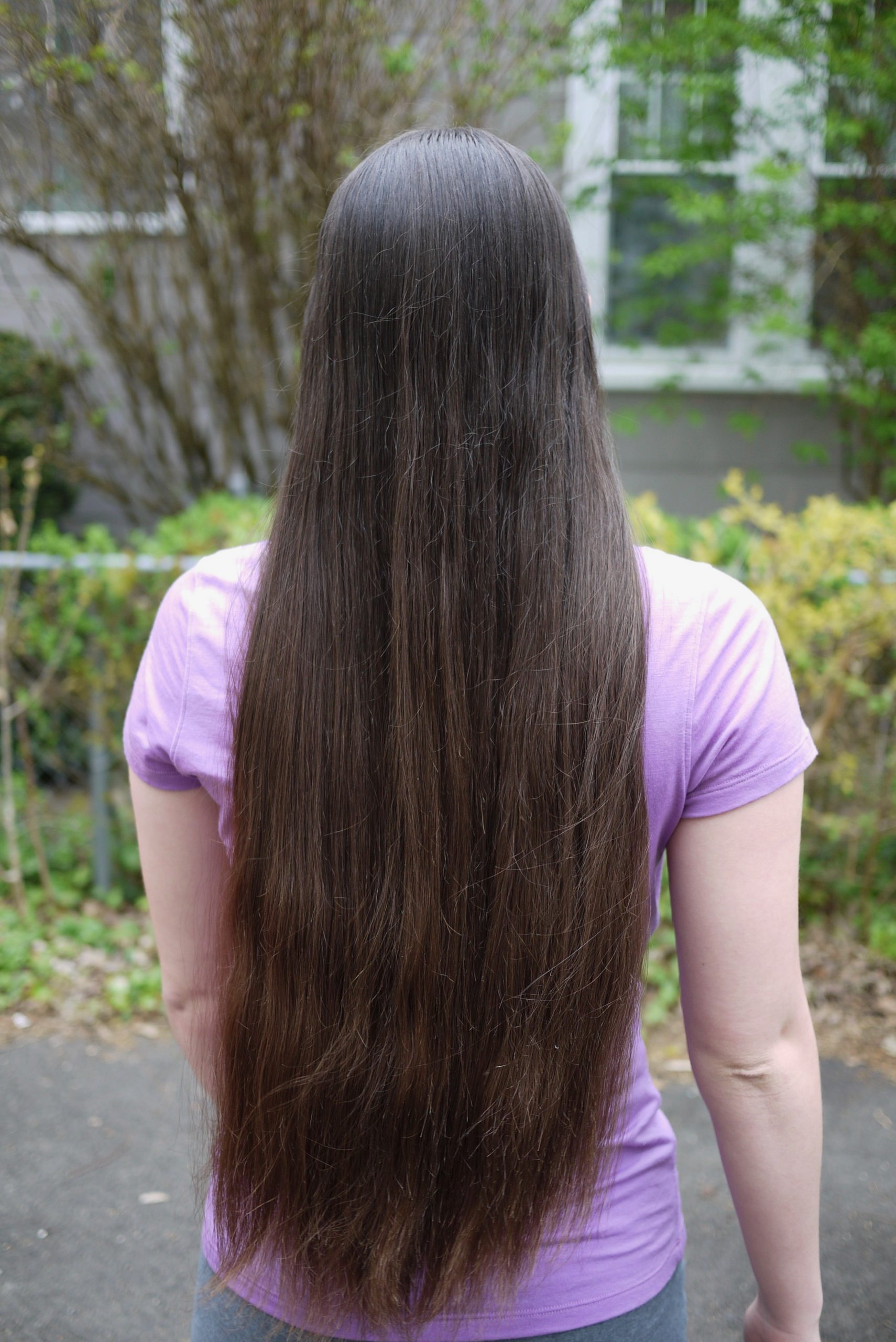 19 inches of Dark Brown Virgin Hair