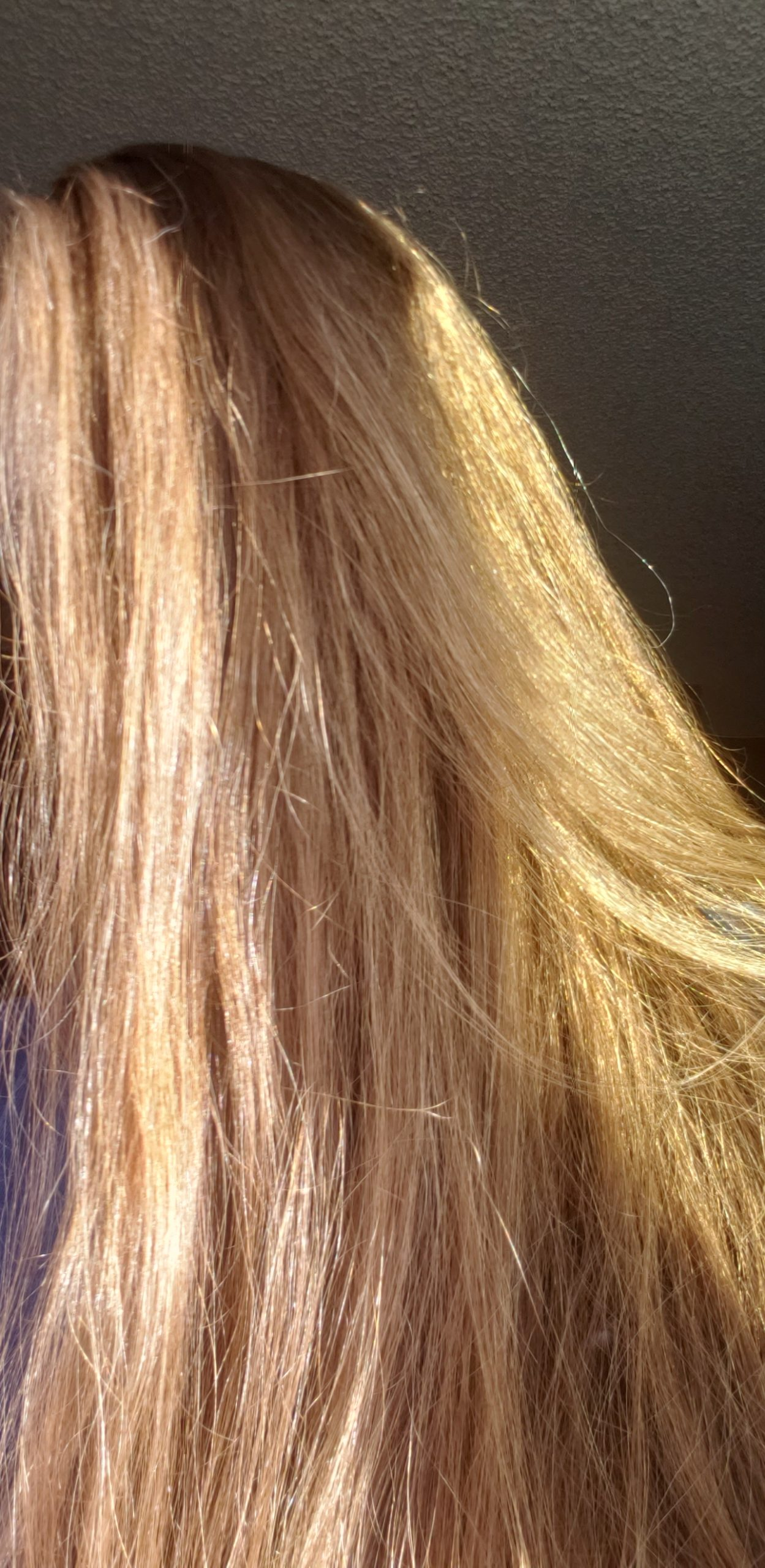 15 inches of golden brown, unprocessed hair