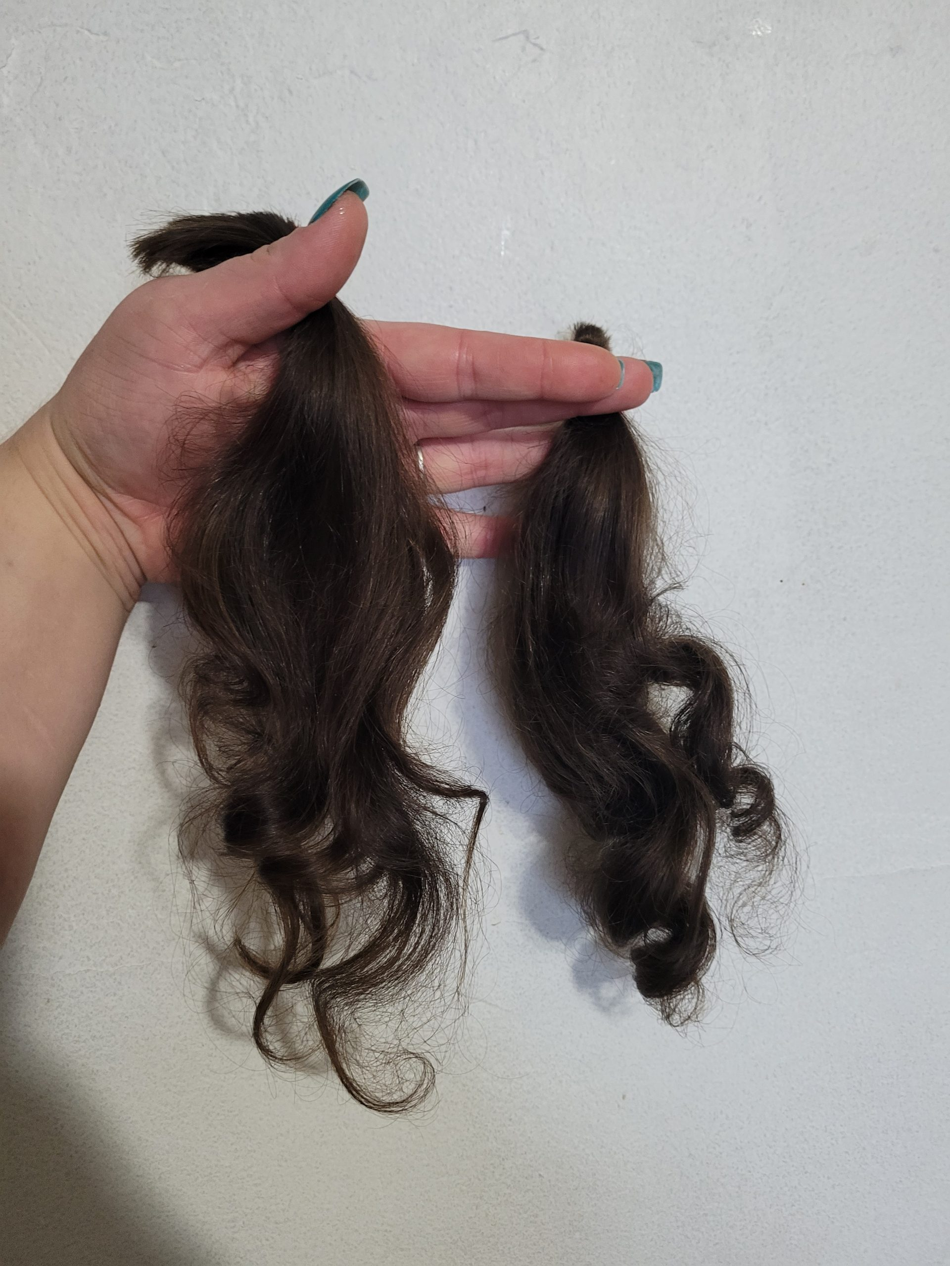 2 x 12inch virgin brown hair